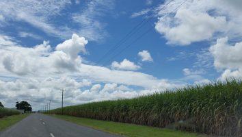 Cane Farm Road